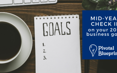 Mid-year check-in: How are you doing on your Business Goals this Year?
